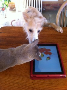 Jazz's iPad